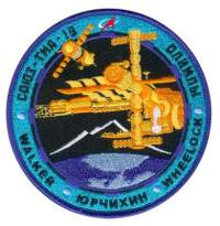 TMA-19 Mission Patch