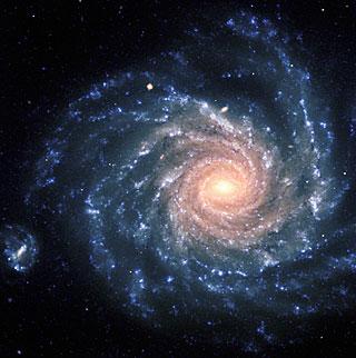 NGC 1232