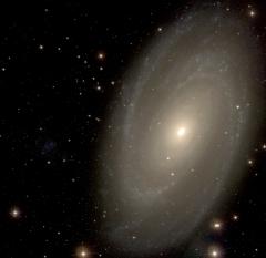 M81 - SDSS