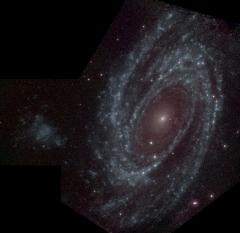 M81 - UVOT
